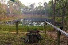 Mist-on-the-dam