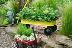 container-gardening-ideas